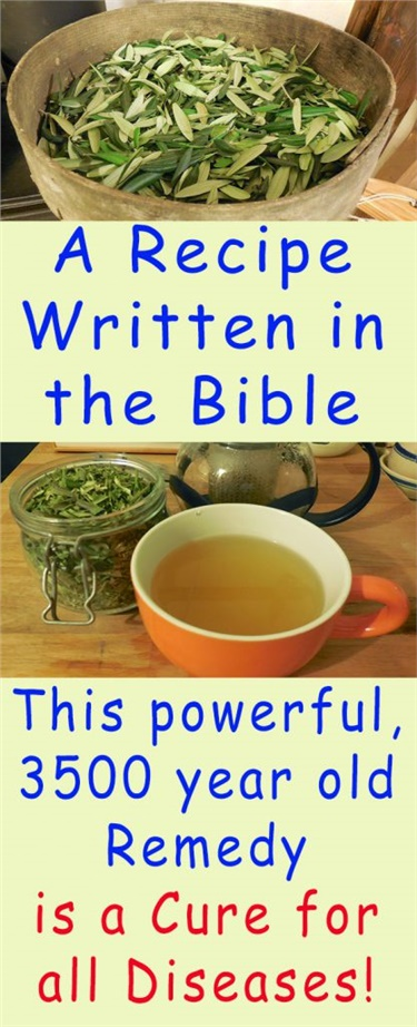 A Recipe Written in the Bible: This powerful, 3500 year old Remedy is a Cure for all Diseases!