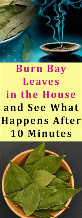 Burn Bay Leaves in the House and See What Happens After 10 Minutes